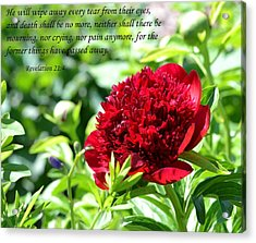 Death Shall Be No More Acrylic Print by Deena Stoddard