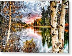 Deep Autumn Acrylic Print by John Williams