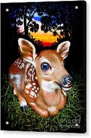Deer Fawn Acrylic Print by Jurek Zamoyski