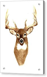 Deer - Front View Acrylic Print by Michael Vigliotti