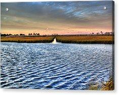 Delaware- Assawoman Bay Acrylic Print by Tim Buisman