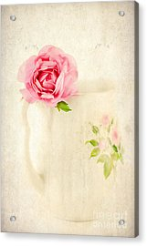 Delicate Acrylic Print by Darren Fisher