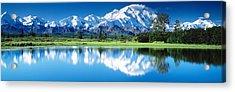 Denali National Park Ak Usa Acrylic Print by Panoramic Images