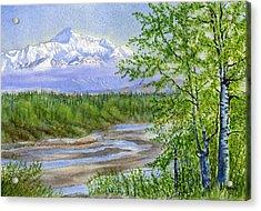 Denali Viewpoint Acrylic Print by Sharon Freeman