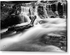 Descent Acrylic Print by Bill Cantey