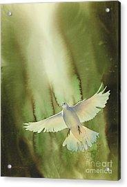 Descent Acrylic Print by Robert Hooper