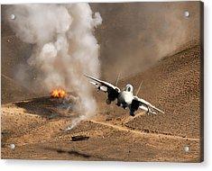 Desert Diamondback Acrylic Print by Peter Chilelli