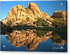 Desert Oasis Reflections Acrylic Print by Adam Jewell