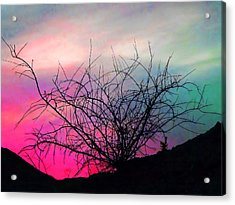 Desert Sunset Acrylic Print by Terril Heilman