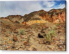 Desert Zen Acrylic Print by Heidi Smith