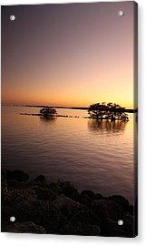 Deserted Island Acrylic Print by AR Annahita