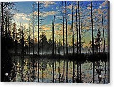 Devils Den In The Pine Barrens Acrylic Print by Louis Dallara