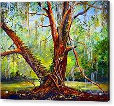Devine Oak Acrylic Print by AnnaJo Vahle