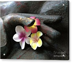 Devotional Acrylic Print by Cheryl Young