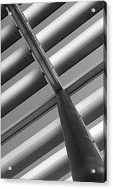 Diagonal Lines Acrylic Print by Darryl Dalton