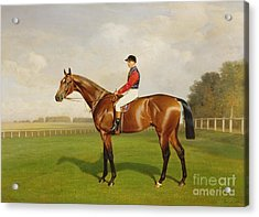 Diamond Jubilee Winner Of The 1900 Derby Acrylic Print by Emil Adam