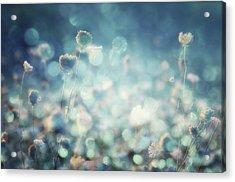 Diamonds Acrylic Print by Stefan Eisele