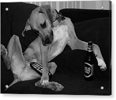 Diesel In Black And White Acrylic Print by Rob Hans