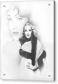 Dietrich Acrylic Print by TPD Art