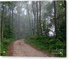Dirt Path In Forest Woods With Mist Acrylic Print by Olivier Le Queinec