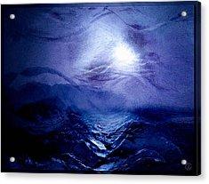 Diving Into The Blue Acrylic Print by Gun Legler
