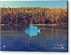 Do Not Be Afraid To Go Against The Flow Fish In Autumn Lake Acrylic Print by Beverly Claire Kaiya