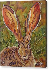 Do These Ears Make Me Look Fat Acrylic Print by Robin Hegemier