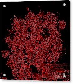 Do You See Me Acrylic Print by Shelia Kempf