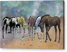 Do You See Stars Acrylic Print by Betsy C Knapp