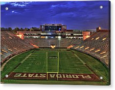 Doak Campbell Stadium Acrylic Print by Alex Owen