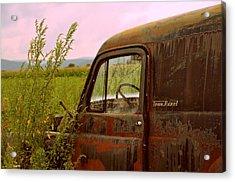 Dodge Acrylic Print by Jennie Kilcullen