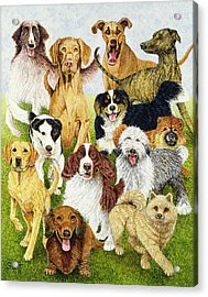 Dog Days Acrylic Print by Pat Scott