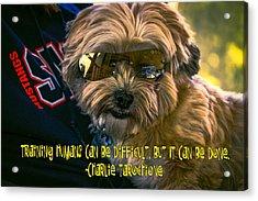 Dog Training Humans Acrylic Print by Kathy Tarochione