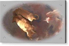 Doggie Brotherhood Acrylic Print by Usha Shantharam