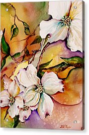 Dogwood In Spring Colors Acrylic Print by Lil Taylor