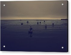 Done For The Day Acrylic Print by Laurie Search