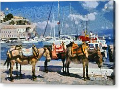 Donkeys Waiting For A Ride Acrylic Print by George Atsametakis