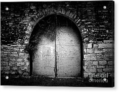 Doors To The Other Side Acrylic Print by Trish Mistric
