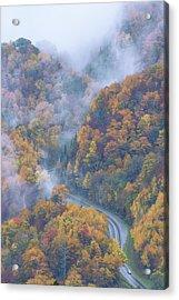 Down Below Acrylic Print by Chad Dutson