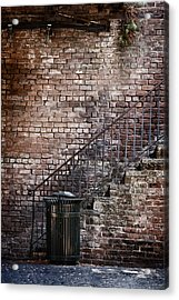 Down In The Dumps Acrylic Print by Margie Hurwich