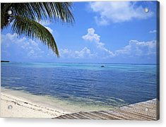 Down Island Acrylic Print by Stephen Anderson
