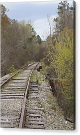 Down The Line Acrylic Print by MM Anderson