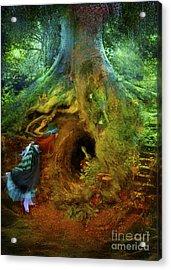 Down The Rabbit Hole Acrylic Print by Aimee Stewart