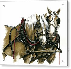 Draft Horses Acrylic Print by Marie Downing
