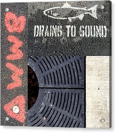 Drains To Sound Acrylic Print by Nancy Merkle