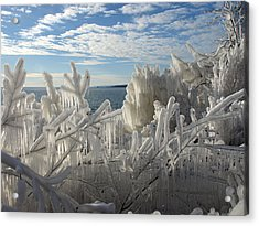 Draped In Icy Beauty Acrylic Print by James Peterson