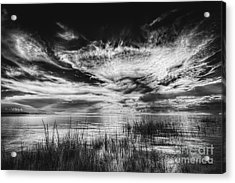 Dream Of Better Days-bw Acrylic Print by Marvin Spates