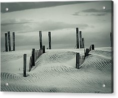 Drifting Dunes Acrylic Print by Tom McGowan