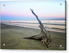 Driftwood At Dusk Acrylic Print by Phill Doherty