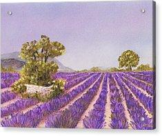 Drome Provence Acrylic Print by Anastasiya Malakhova